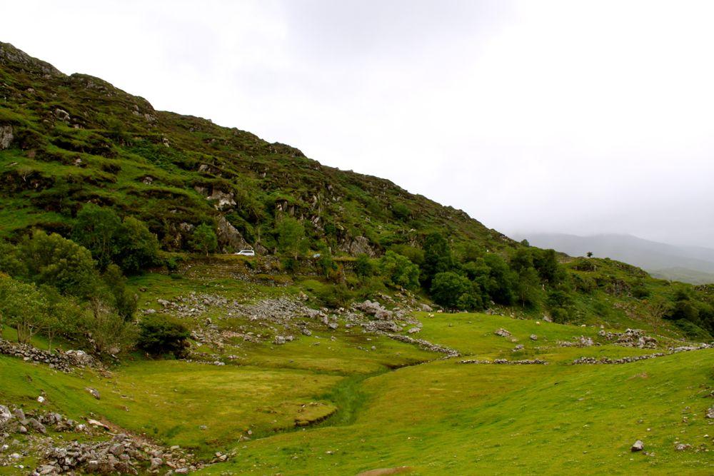 647 - Kissane Sheep Farm