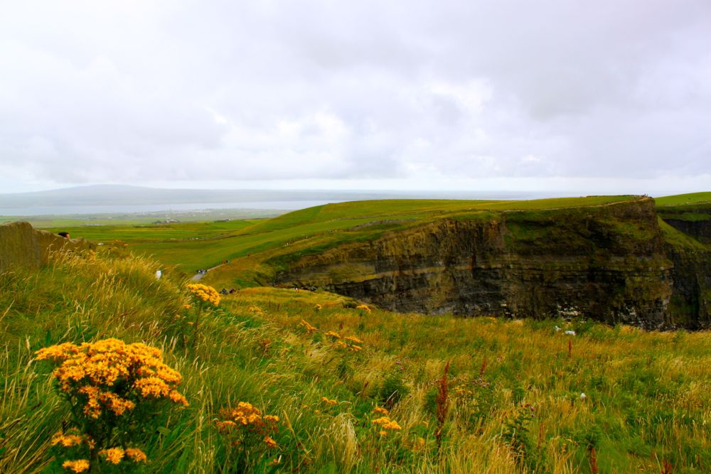 872 - Cliffs of Moher