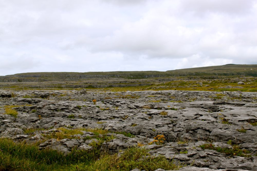 896 - The Burren