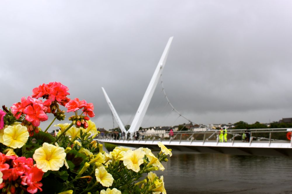 1186 -Peace Bridge, Derry