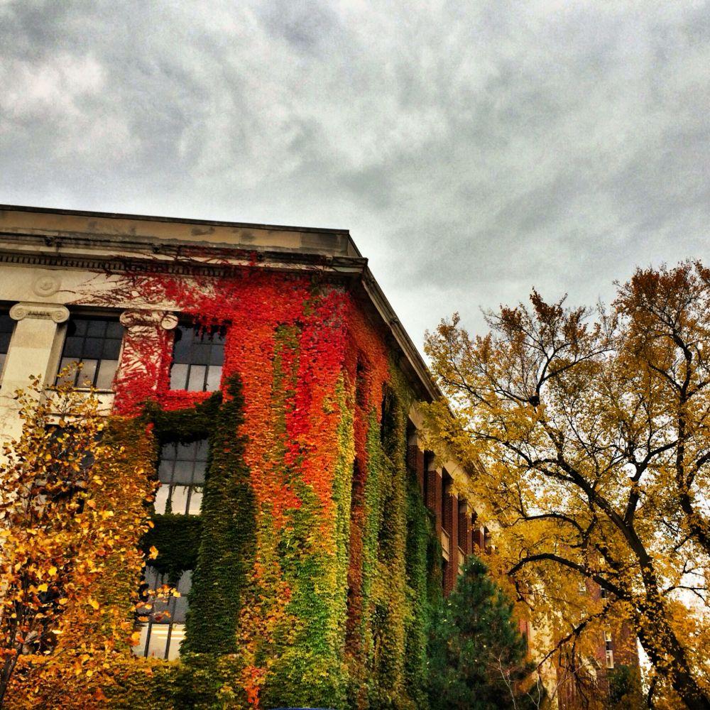 a2 autumn6