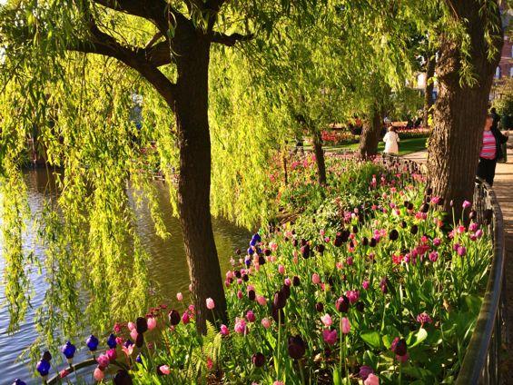 Tivoli Gardens7