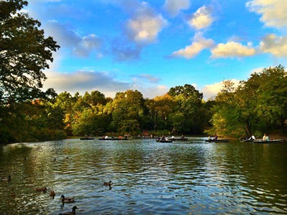 Central Park10