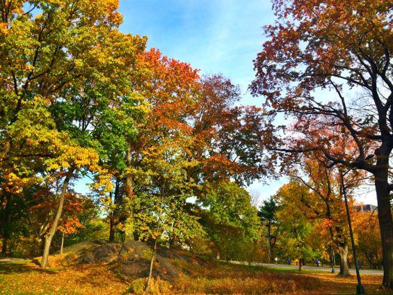 Central Park18