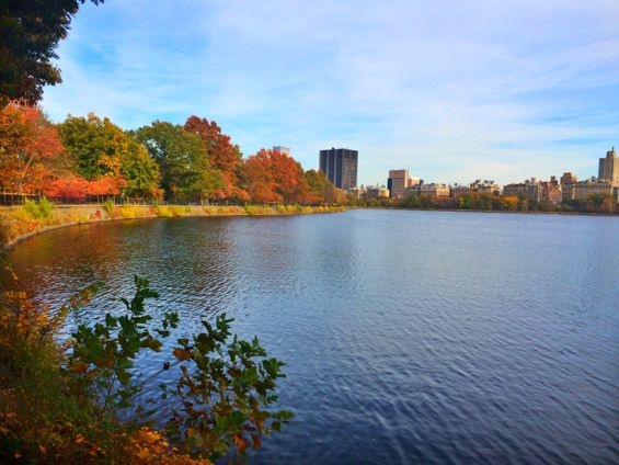 Central Park22