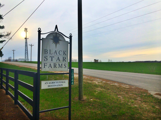 black star farms11