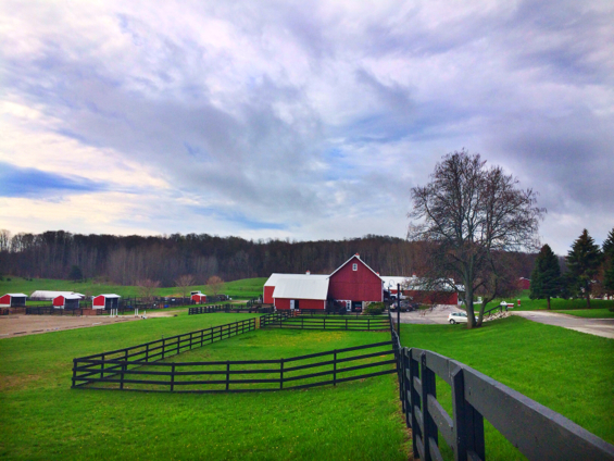 black star farms3