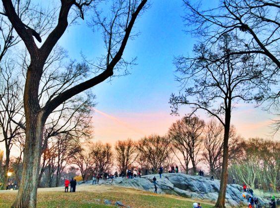 Central Park2