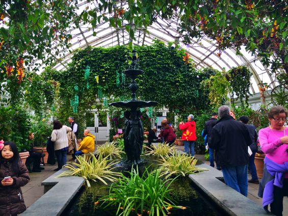 NYBG Orchid Show8