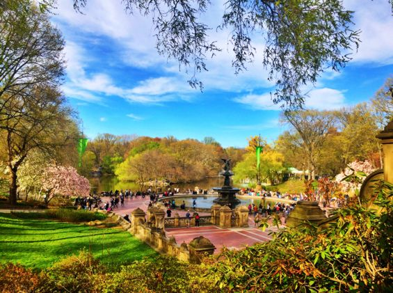 Central Park Springtime11