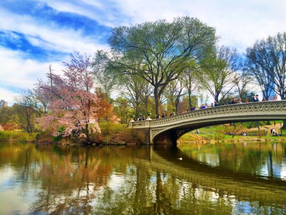 Central Park Springtime9