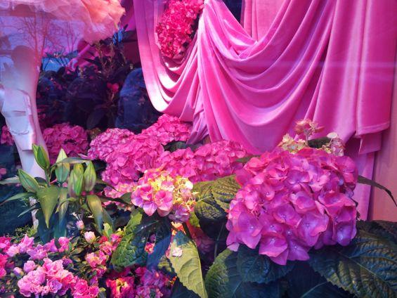 Macy's Flower Show11
