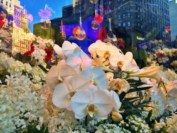 Macy's Flower Show13