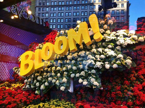 Macy's Flower Show6