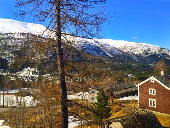 Norway in a Nutshell1