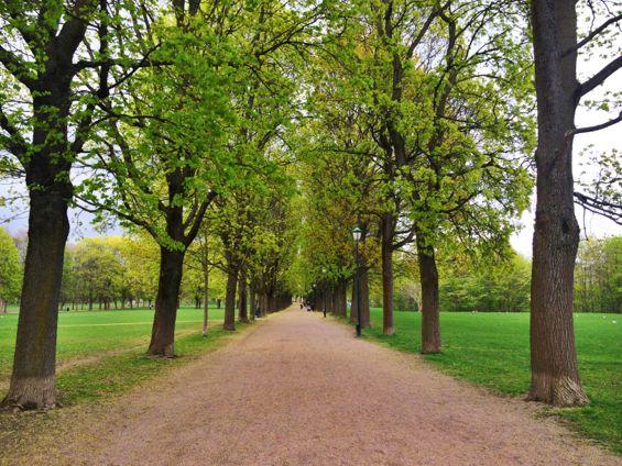 Frogner Park4