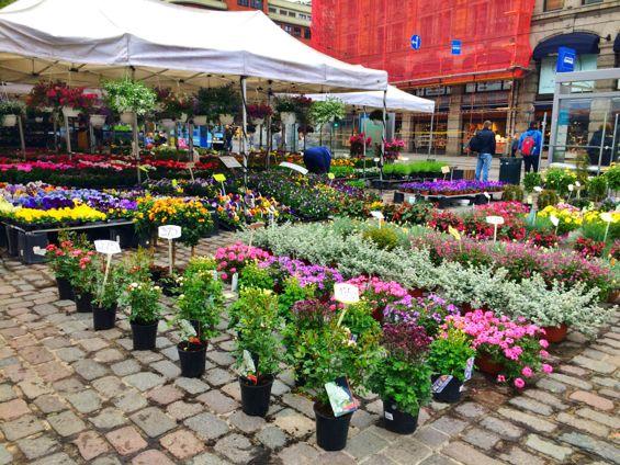 Oslo - Flower Market2