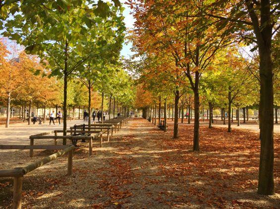 Luxembourg Gardens2