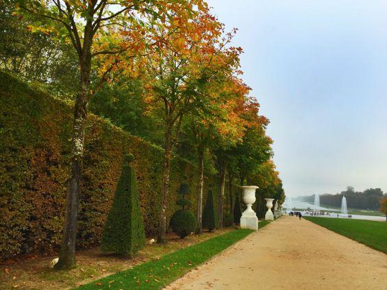 Versailles Gardens11