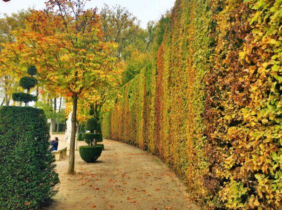 Versailles Gardens14