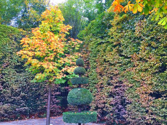 Versailles Gardens21
