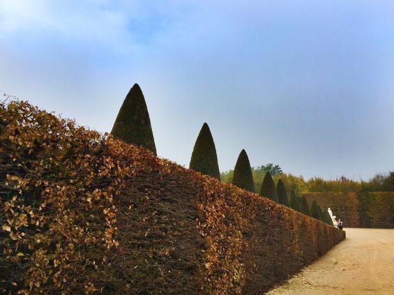 Versailles Gardens5