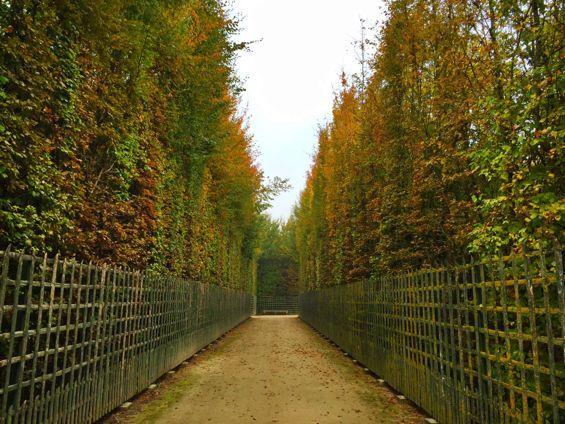 Versailles Gardens9