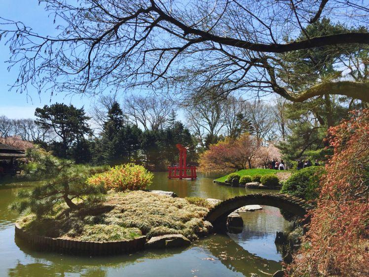Brooklyn Botanical Garden11