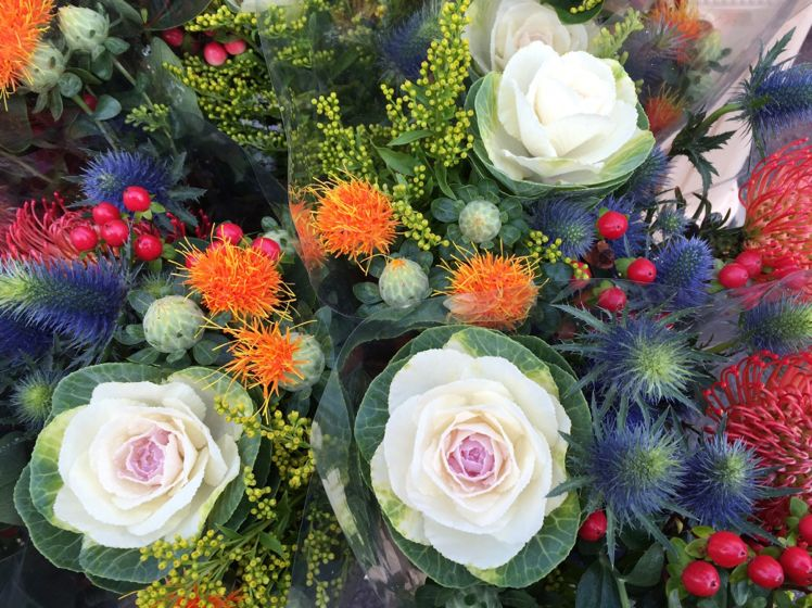 Columbia Road Flower Market11
