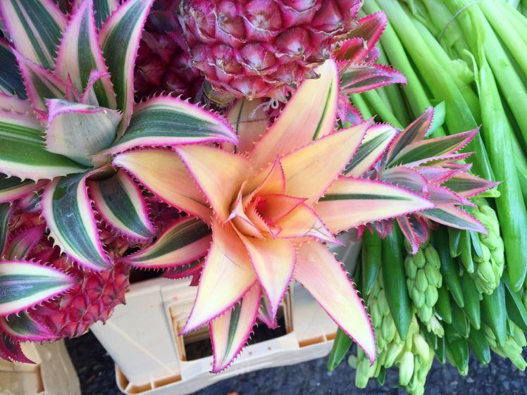Columbia Road Flower Market14