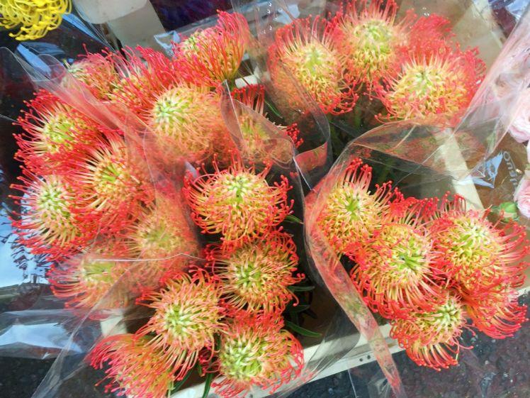 Columbia Road Flower Market15