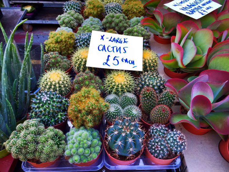 Columbia Road Flower Market2