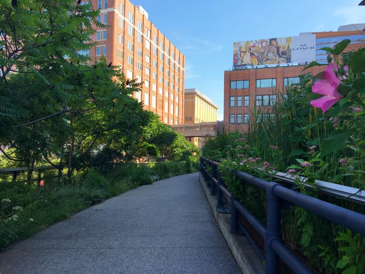 The High Line8