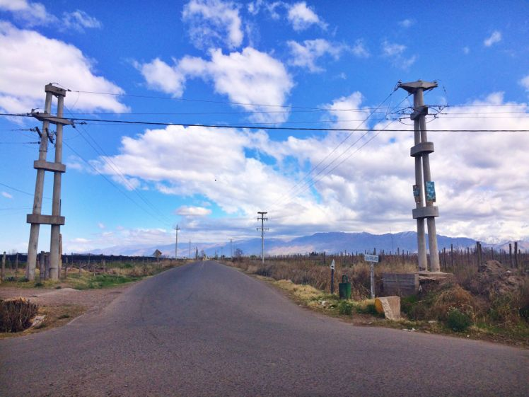 Valle de Uco5