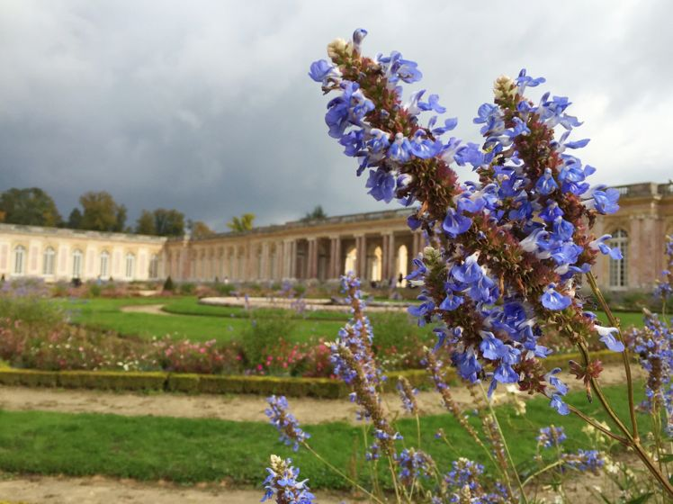Versailles - Grand Trianon17