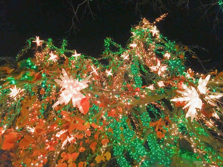 dyker-heights-christmas-lights10