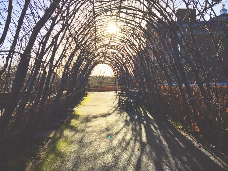 kensington-gardens2